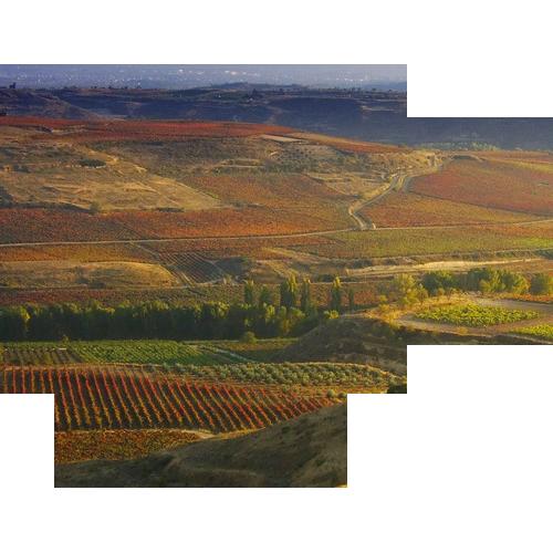 Wijn uit Spanje