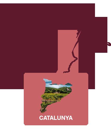 wijnregio catalunya