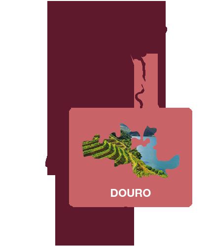wijnregio douro